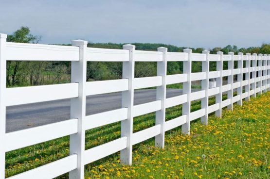 four rail ranch style vinyl fence along road with dandelions in front
