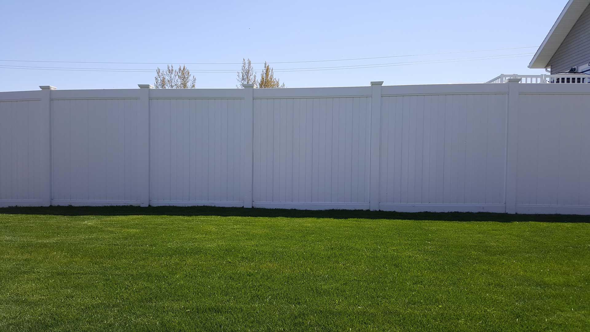 tall pvc vinyl privacy fence in backyard